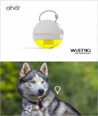 wistiki-aha